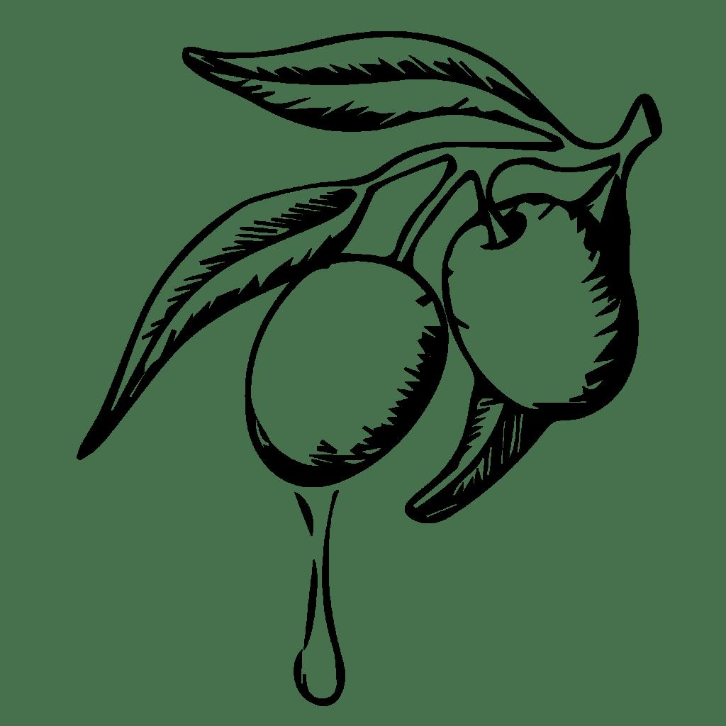 Le Madri - Le Olive